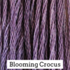 Classic Colorworks - Blooming Crocus