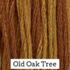 Classic Colorworks - Old Oak Tree